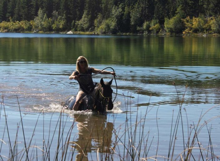 natural horsemanship riding holiday