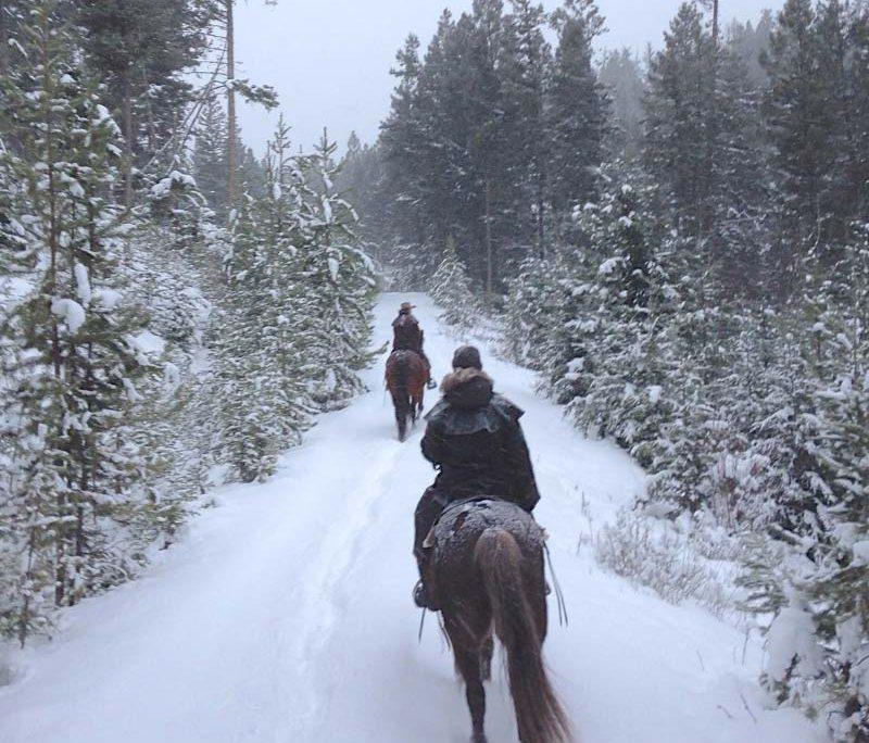 winter riding activities