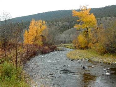bonaparte river